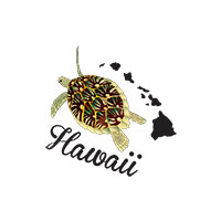 hawaii turtle shirt and hawaii islands