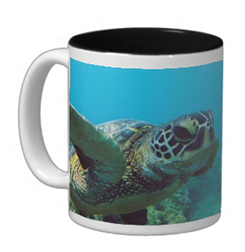 hawaii green sea turtle coffee cup