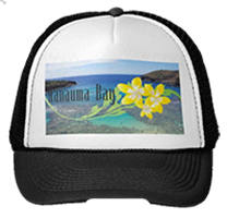 hawaii plumeria flower cap