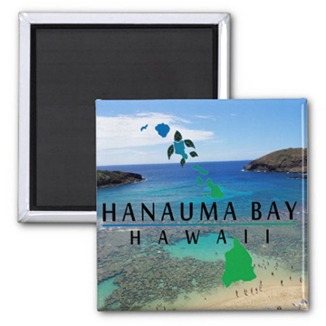 hawaii-magnets