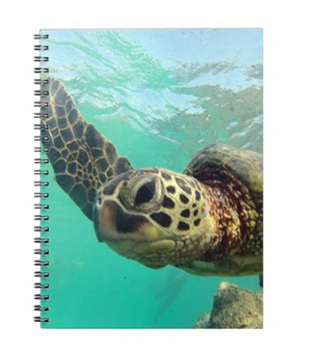 hawaii note books