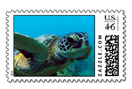 hawaii green sea turtle postage stamp